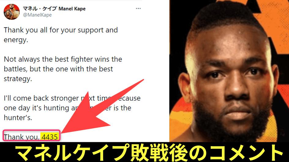 マネルケイプ,UFC